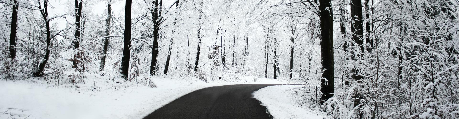 vinterree